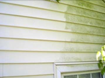 Home low pressure washing showing the difference it can make on vinyl siding